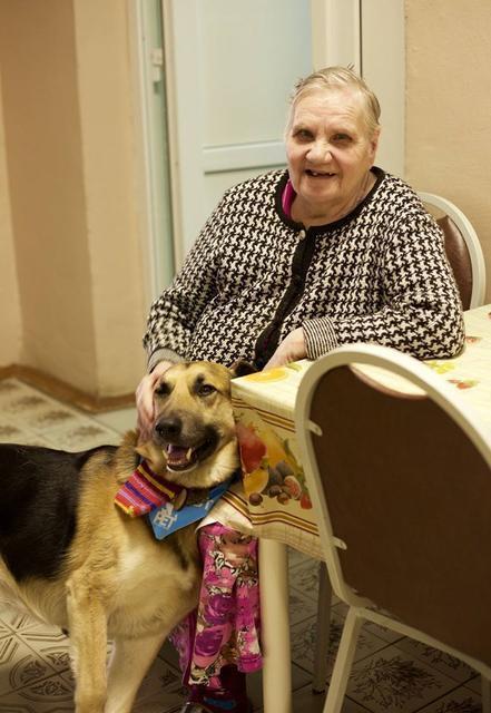 Бабушек по собачьи фото 743-785