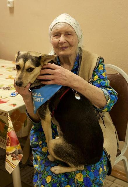Бабушек по собачьи фото 743-732